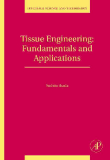 Tissue Engineering Fundamentals and Applications