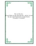 Báo cáo khoa học: Kết quả Nghiên cứu đặc điểm hình thái , sinh học của mọt đục quả cà phê Stephanoderes hampei Ferriere (Coleoptera : Scolytidae)