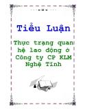 Tiểu Luận: Thực trạng quan hệ lao động ở Công ty CP KLM Nghệ Tĩnh