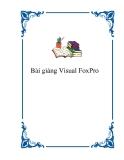 Bài giảng Visual FoxPro