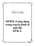 Tiểu Luận: OFDM và ứng dụng trong truyền hình số mặt đất DVB-T