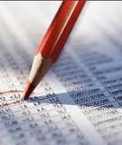 Tài liệu kế toán: Chuẩn mực kiểm toán nội bộ