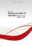 Báo cáo  về thương mại điện tử Việt Nam năm 2010