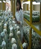 Bài giảng nuôi cấy mô thực vật