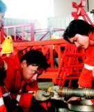 Petroleum Geology - Địa chất dầu khí