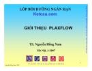 Giới thiệu PlaxFlow