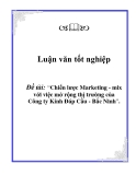 Luận văn tốt nghiệp: Chiến lược Marketing - mix với việc mở rộng thị trường của Công ty Kính Đáp Cầu - Bắc Ninh - Đặng Quyết Chiến