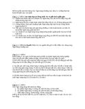 Đề thi tuyển sinh liên thông môn  Ngân hàng thương mại, khóa 13, trường Đại học Kinh tế Quốc dân (120 phút)