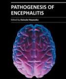 PATHOGENESIS OF ENCEPHALITIS