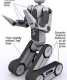autonomous robotic systems anibal t de almeida and oussama khatib eds