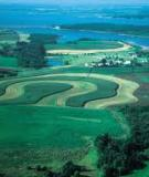 Đồ án tốt nghiệp: Đánh giá tính rủi ro về xói mòn đất tiềm ẩn và định hướng sử dụng bền vững tài nguyên đất vùng lâm nghiệp