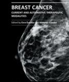 BREAST CANCER – CURRENT AND ALTERNATIVE THERAPEUTIC MODALITIES