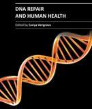 DNA REPAIR AND HUMAN HEALTH