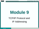 CCNA 1 Network Basics - Module 9 TCP/IP Protocol and IP Addressing