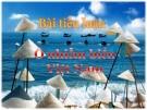 Ô nhiễm biển Việt Nam