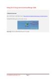 Hướng Dẫn Sử Dụng Internet Download Manager