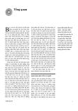 Báo cáo phát triển con người Việt nam