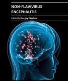 NON-FLAVIVIRUS ENCEPHALITIS