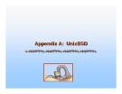 Operating System Concepts - Appendix A: UnixBSD