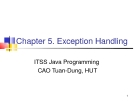 Java C5. Exception Handling