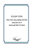 Luận văn: Phát triển công nghiệp chế biến nông lâm sản ở thành phố Hồ Chí Minh