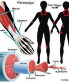 Chế độ dinh dưỡng giúp kiểm soát đau xơ cơ