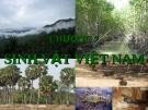 Chương 7: Sinh vật Việt Nam