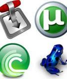 Bảo vệ các điều khoản dành người dùng BitTorrent