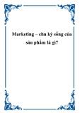 Marketing – chu kỳ sống của sản phẩm là gì?