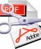 Nâng cấp Adobe Reader và ngăn chặn Zeus