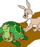 Chuyện ngụ ngôn thỏ và rùa - suy nghĩ và... làm giàu!