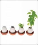 """Top 10 """"Không nên"""" khi kêu gọi quỹ đầu tư cho khởi nghiệp kinh doanh"""