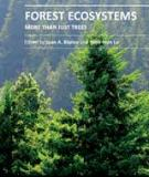 FOREST ECOSYSTEMS – MORE THAN JUST TREES