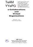 E-Collaborations and Virtual Organizations