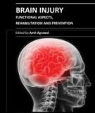 BRAIN INJURY – FUNCTIONAL ASPECTS, REHABILITATION AND PREVENTION