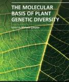 THE MOLECULAR BASIS OF PLANT GENETIC DIVERSITY