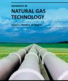 ADVANCES IN NATURAL GAS TECHNOLOGY