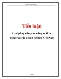 Luận văn: Giải pháp nâng cao năng suất lao động của các doanh nghiệp Việt Nam