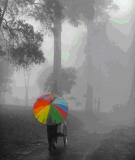 Kinh nghiệm chụp ảnh trong sương mù