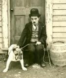 Điều đặc biệt về Chaplin (hề Saclo) và Hitler