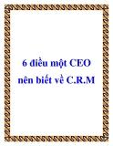 6 điều một CEO nên biết về C.R.M