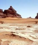 Vai trò của khoa học trong quản lý toàn cầu hóa về sa mạc