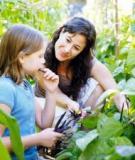 Nguyên nhân và cách xử trí khi trẻ đổ nhiều mồ hôi