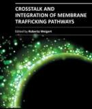 CROSSTALK AND INTEGRATION OF MEMBRANE TRAFFICKING PATHWAYS