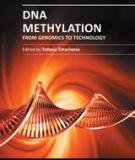 DNA METHYLATION – FROM GENOMICS TO TECHNOLOGY