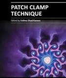 PATCH CLAMP TECHNIQUE