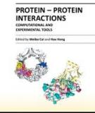PROTEIN-PROTEIN INTERACTIONS –COMPUTATIONAL AND EXPERIMENTAL TOOLS