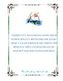 """NGHIÊN CỨU KHOA HỌC-ĐỀ TÀI:""""NGHIÊN CỨU SO SÁNH HAI SƠ ĐỒ THAM SỐ HOÁ ĐỐI LƯU BETTSMILLER- JANJIC (BMJ) VÀ KAIN-FRITSCH (KF) TRONG MÔ HÌNH ETA TRÊN CƠ SỞ ĐÁNH GIÁ DỰ BÁO QUỸ ĐẠO BÃO XANGSANE (0615)"""""""