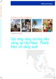 Giữ nhịp tăng trưởng bền vững tại Việt Nam: Thách thức về năng suất