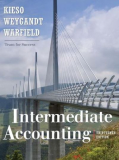 THE ACCOUNTING ENVIRONMENT